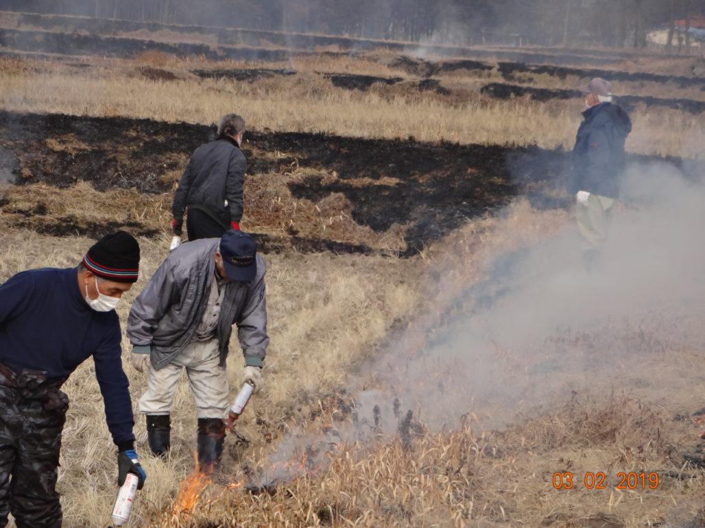 平成31年2月 畦畔土手草焼き、用水路周辺下草刈り